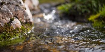 佐賀の豊かな土地と清らかな水